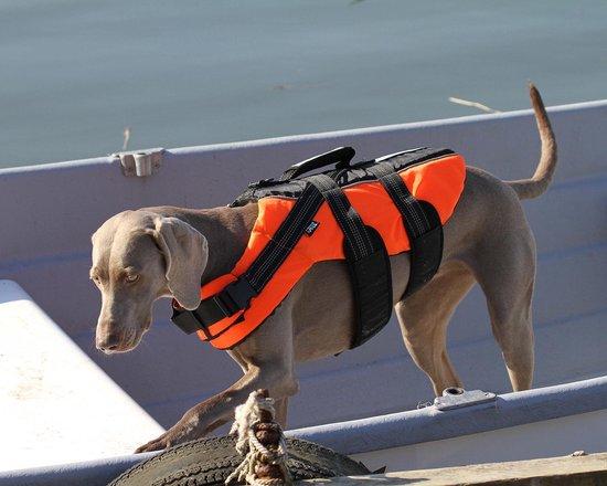 RukkaPets - Zwemvest voor honden - Veilig op de boot - Lichtgewicht Reddingsvest - Verkrijgbaar in XS, S, M, L, XL - Zwemvest - L