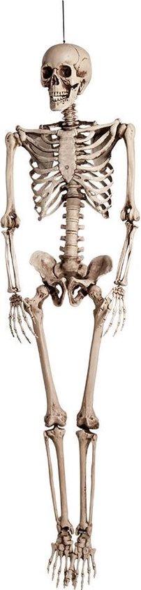 """""""Skelet Hangvesiering voor Halloween ! - Feestdecoratievoorwerp - One size"""""""